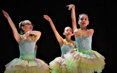 Bailes y Danza